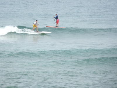 Surfers en SUP (stand-up paddle) à Mundaka. Photo Danny Hailey.