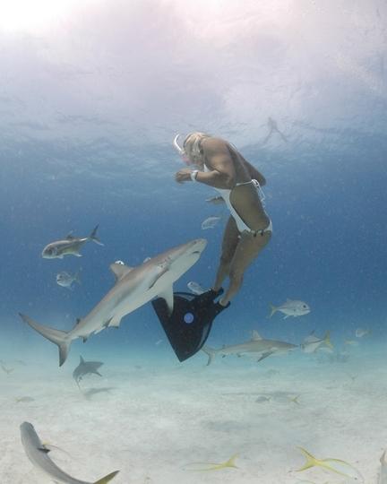 Une surfeuse plonge avec les requins !
