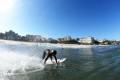 Le surf : une activité physique pour le plaisir