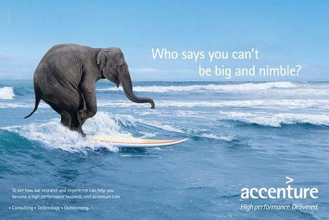 Pub pour Accenture avec un elephant sur une planche de surf