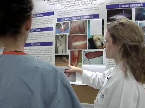 Une Classification Médicale pour les Morsures de Requins