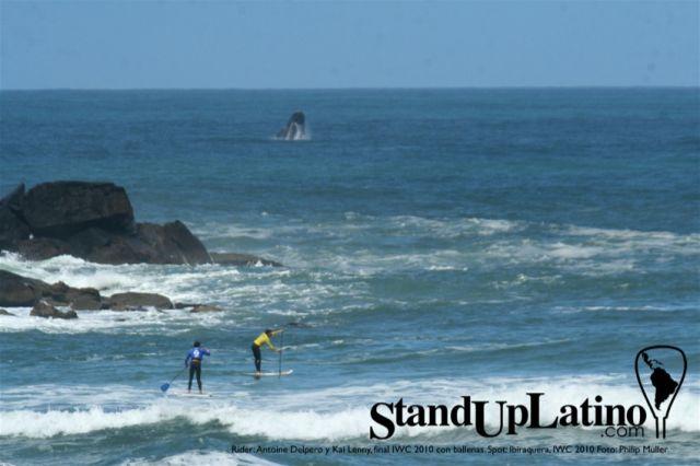Kai Lenny et Antoine Delpero rament avec une baleine en arriere plan - SUP World Tout Bresil
