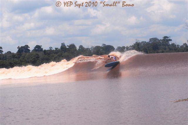 eduardo bage surf en stand-up paddle a bono sur la Kampar River en Indo.