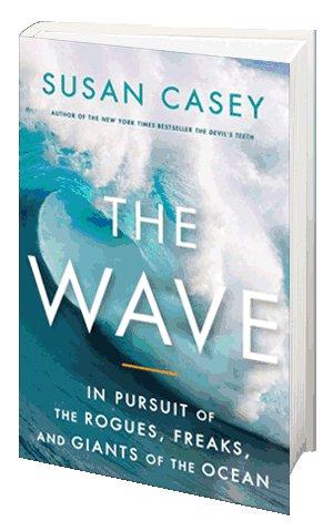 The Wave : un livre fascinant sur la puissance des vagues