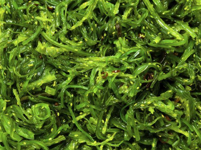 Des algues au menu du régime anticancer du Pr David Khayat