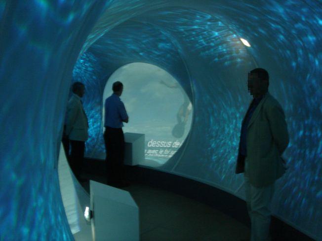 http://blog.surf-prevention.com/wp-content/uploads/2011/06/cite-ocean-biarritz.jpg