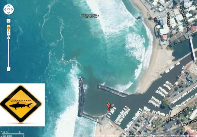 Nouvelle attaque de requin à la Réunion sur un surfeur de 16 ans