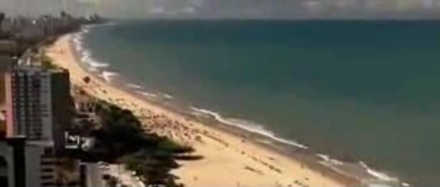 Documentaire sur les requins : l'invasion de Recife au Brésil