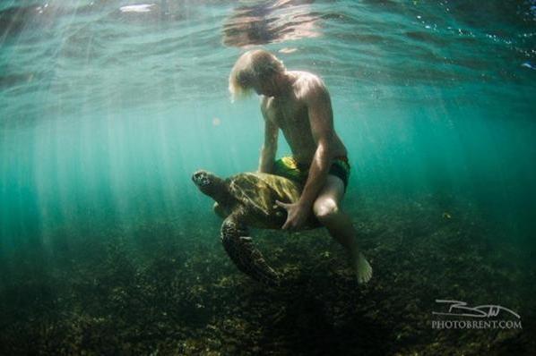 Jamie O'Brien déclenche une polémique…en voulant faire de la prévention pour les tortues