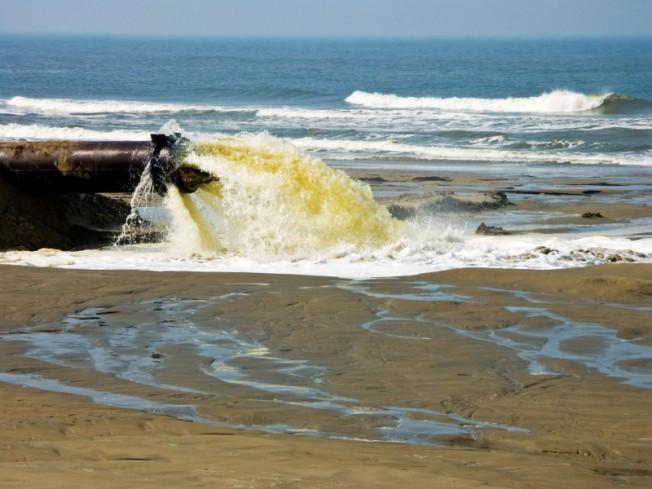 Santé Environnement : les microbes de la Terre contaminent les animaux de la Mer