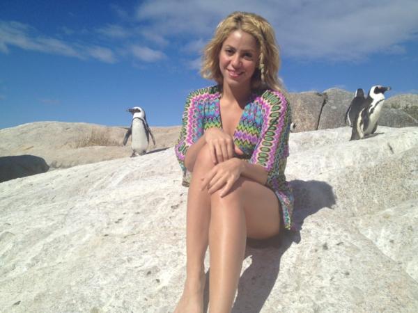 Shakira raconte son attaque par un Lion de Mer sur sa page ... Shakira Waka Waka