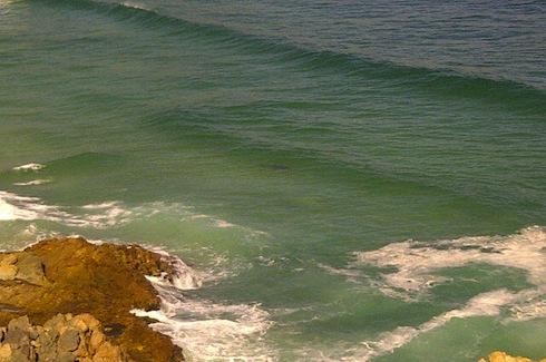 Attaque de Requin en Afrique du Sud fatale pour un bodyboarder