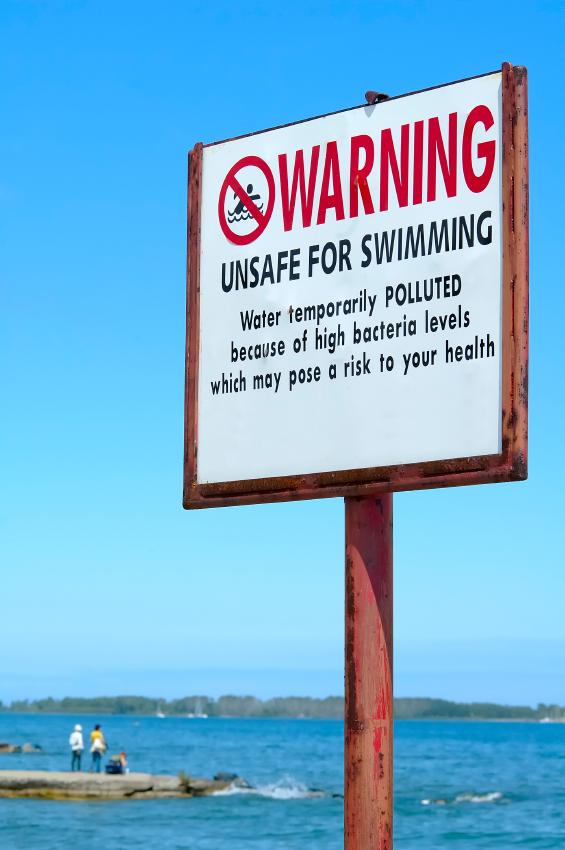 «Surf Infection» version 1.0 : surveillance des maladies liées à la pollution de l'eau de mer et des plages