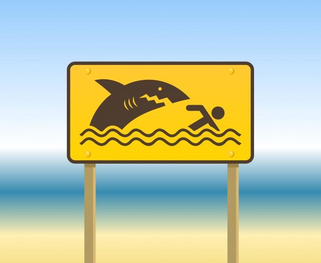 La Réunion : Didier Dérand veut nager où ont eu lieu les attaques de requins…