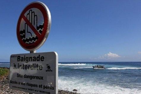 Après les attaques : à quoi servira la pêche de 20 requins à La Réunion ?