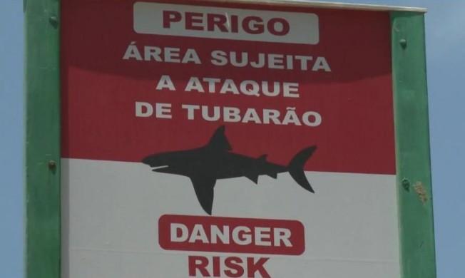 Les Attaques de Requins continuent à Recife malgré la prévention
