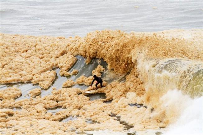 Insolite: Session Mousse pour des surfeurs en Nouvelle-Zélande !
