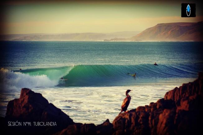 Surf Trip au Chili : le Paradis des Gauches