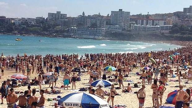 Bondi Beach: un Requin vient présenter ses vœux de Bonne Année…