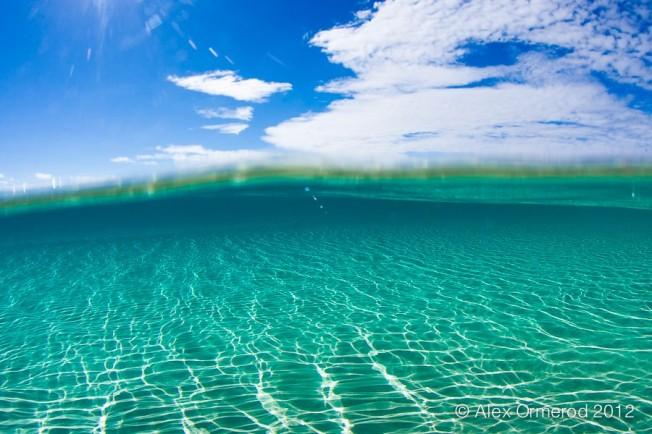 Comment la Mer fait-elle pour se dépolluer ?