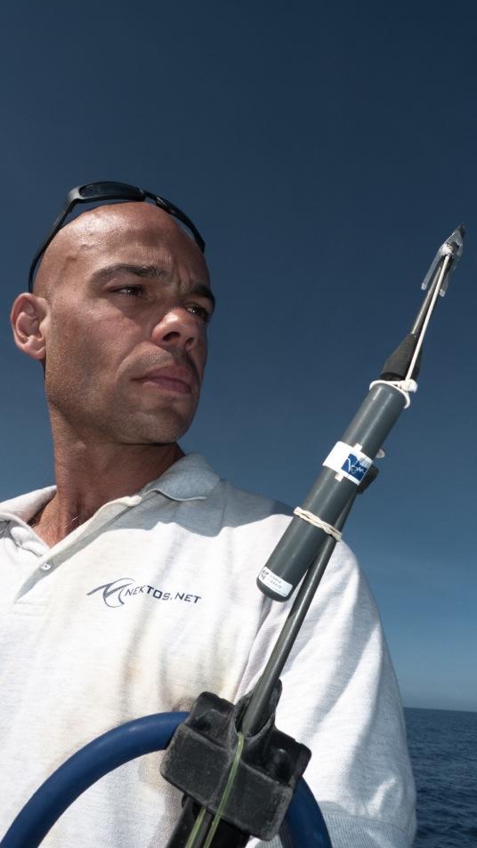 Aurait-on pu prévenir la dernière attaque de requin à La Réunion ?