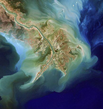 Zone Morte Record dans les Eaux du Golfe du Mexique