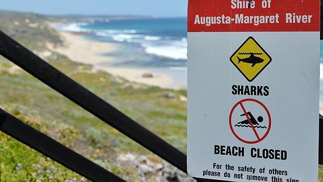 Attaque de Requin en Australie: le surfeur mort sur le coup