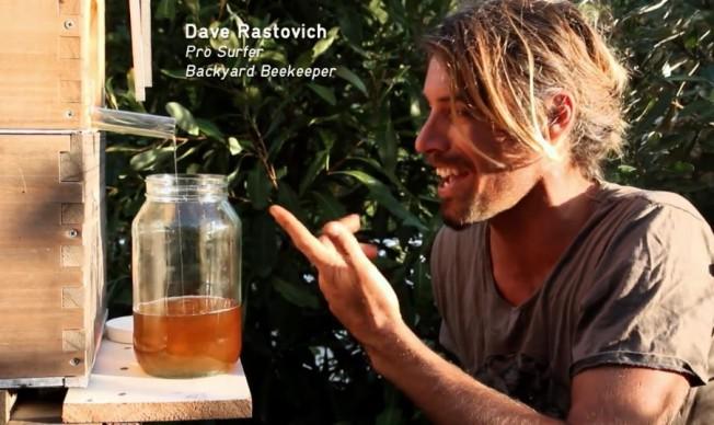 dave rastovich flow hive