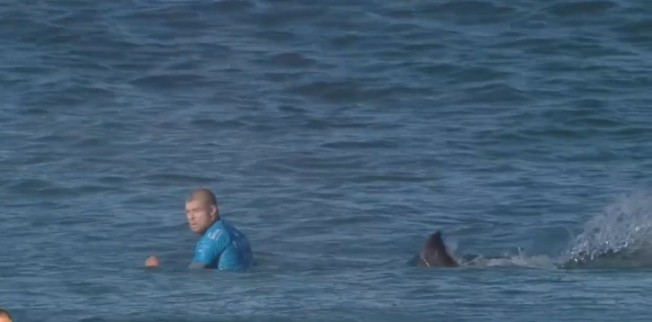 mick fanning shark attack