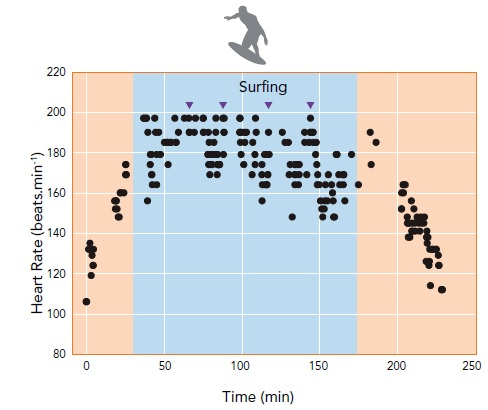 surfer heart rate