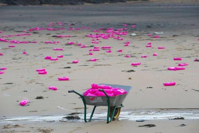 bouteilles plastique rose plage