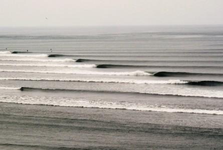 Surf Prevention - Blog Surf et Santé
