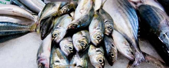 toxines poissons