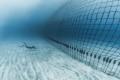 Sérénité retrouvée à la Réunion avec les Filets anti-requins