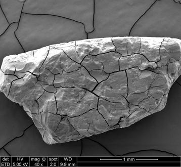 micro plastique fragmentation