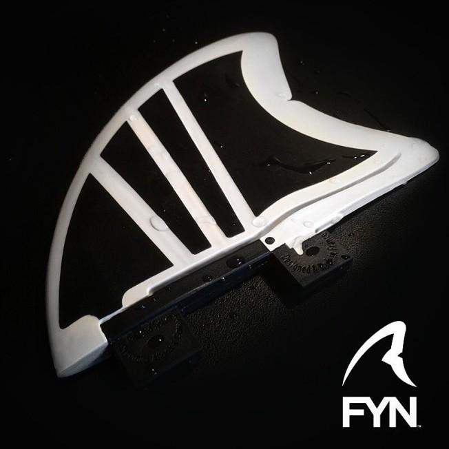 genome FYN dynamics fin