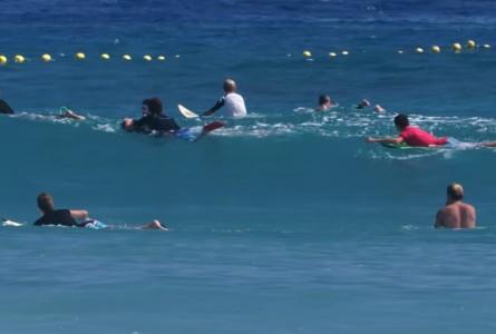 VICE s'intéresse à la Crise Requins à La Réunion