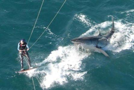 Nouvelle-Calédonie : Attaque de Requin mortelle sur Kitesurfeur
