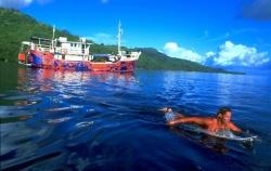 Surfeuse se mettant àl'eau devant le bateau Indies Trader.