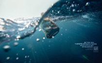 Surfrider demande un grand Ministère de l'Environnement