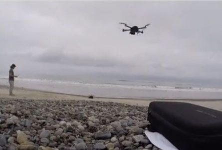 Kalani Robb appâte un Grand Requin Blanc avec un Drone