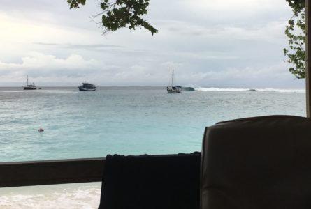 Boat Trip : un choix de Voyage pas si «Éco – Logique» ?